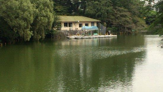 Musashiseki Park
