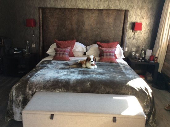 The Lodge Verbier : Cosy large room