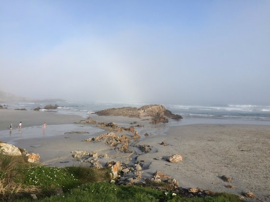 Hermanus, Südafrika: The mist soon rolled in - it was still a beautiful place to visit!