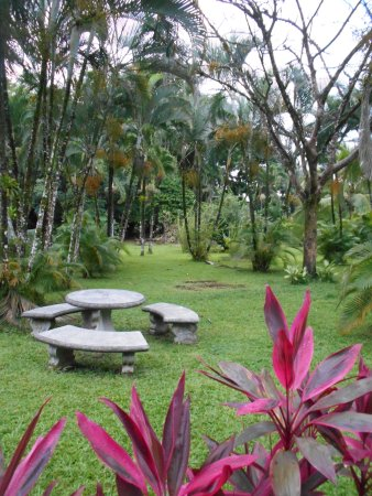 Arenal Country Inn Photo