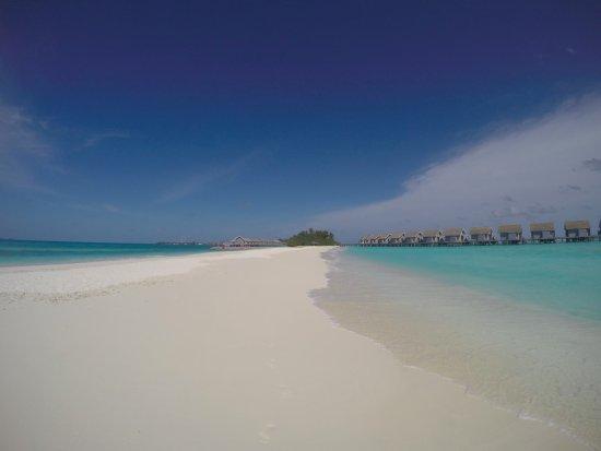 Kuramathi: Looking back at the island from the beautiful sand bank