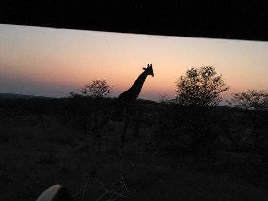 Ladysmith, Sudafrica: photo0.jpg