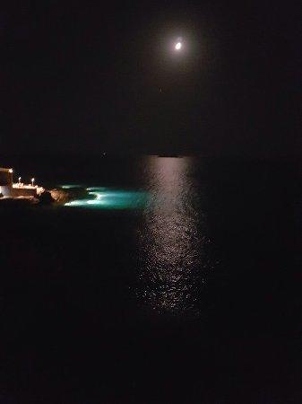 Lagonisi, กรีซ: Ouzeri Aegeon