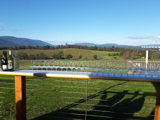 Seville, Australia: Getting ready to taste wines at Killara