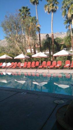 Colony Palms Hotel: DSC_0199_large.jpg