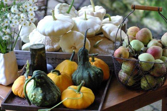 Hautes-Pyrenees, Francia: la recolte