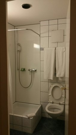 Hotel Bellevue: Small and simple toilet