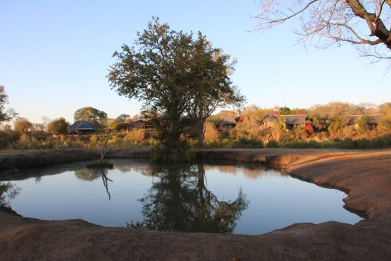 Elephant Plains Game Lodge: Watering Hole Across From Our Room (Lion)
