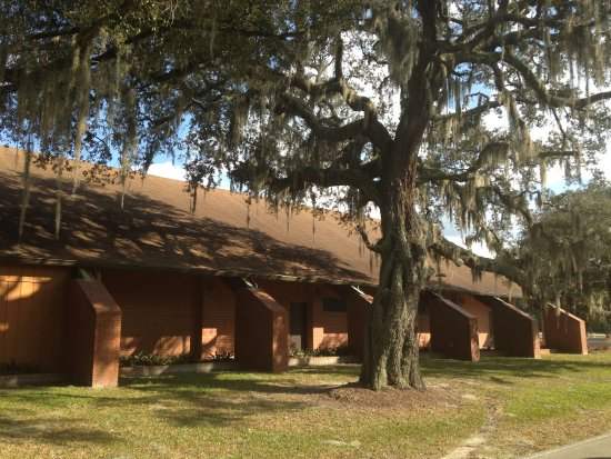 DeLand, FL: Local Church