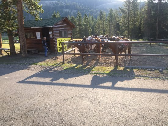 Pahaska Teepee Resort: Opção de passeio à cavalo