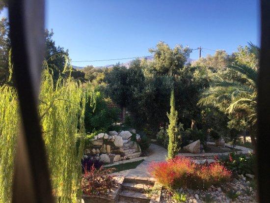 Rethymnon Prefecture, Grecia: Front garden