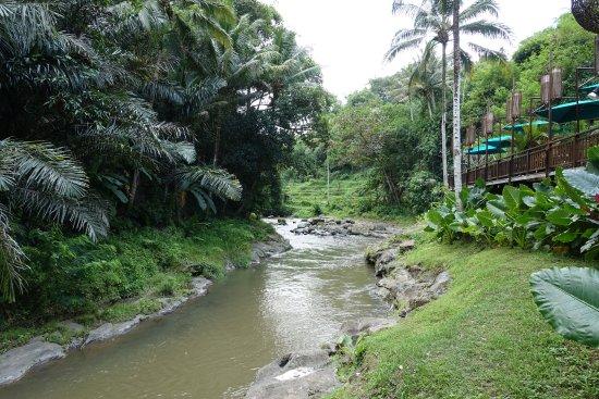 The Samaya Bali Ubud: Ayung River