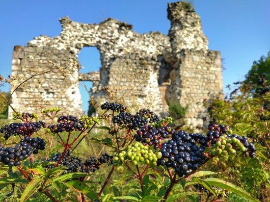 Srednenskiy Castle