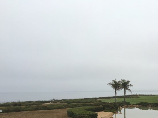 Aptos, Califórnia: View from balcony. Ocean is out there in the fog.