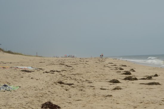 West Tisbury, MA: Ocean side - bigger waves, less crowded