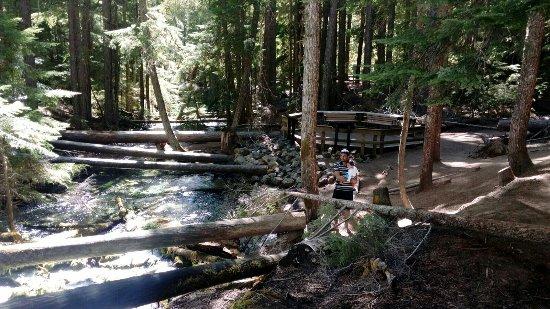 Roseburg, OR: Clearwater Falls