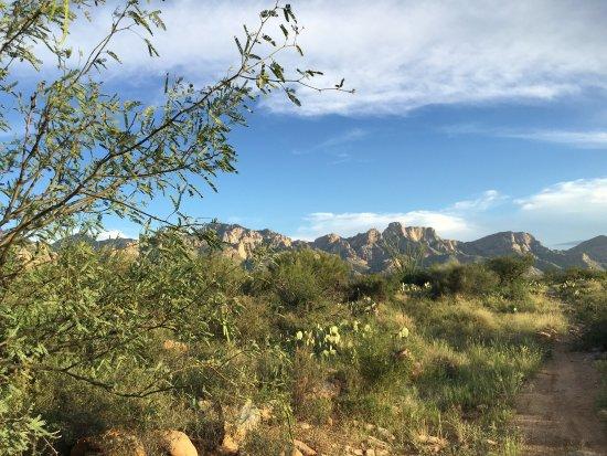 Catalina State Park: photo4.jpg