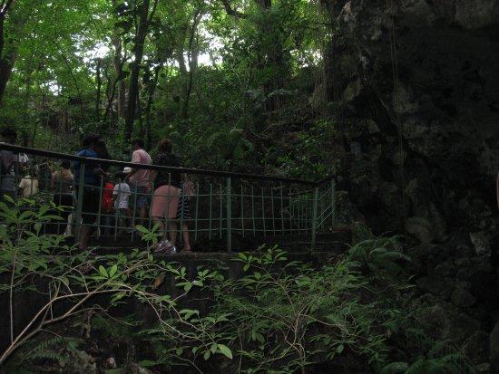 Santo Domingo City Tour: Visit of a cave