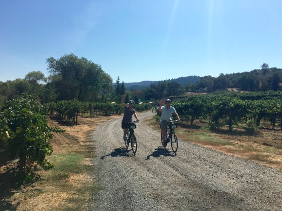Wine Country Bikes: Enjoying a day riding in wine country