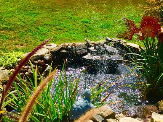 Azalea Garden Inn: photo3.jpg