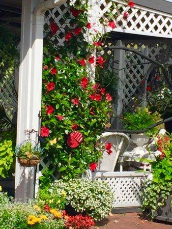 Azalea Garden Inn: photo4.jpg