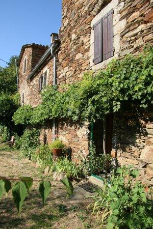 Vialas, Prancis: Vue sur la chambre Nature et la terrasse
