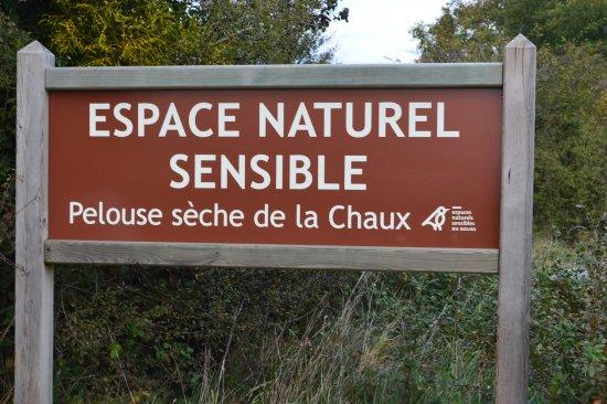 Espace naturel de la pelouse de la Chaux