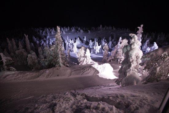Kuusamo, Finlande : Вид с летней веранды