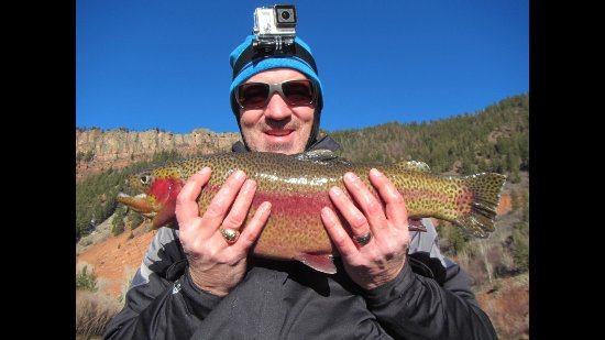 Basalt, CO : Landed this hog male rainbow on a fall wade trip to The Flats with Frying Pan Anglers