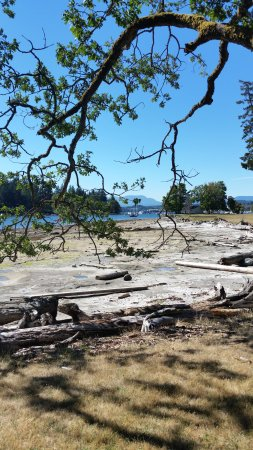 Nanaimo, Canada: Water View from a hiking trail
