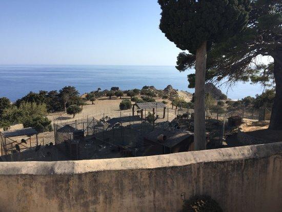Rethymnon, Grecia: photo0.jpg