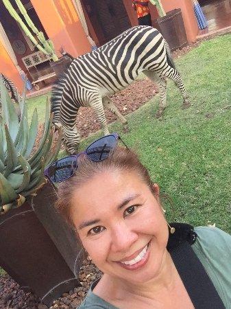 AVANI Victoria Falls Resort: photo9.jpg