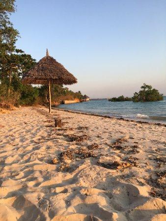 Chuini, Tanzania: Beach