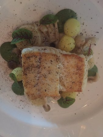Forestville, Californien: Halibut