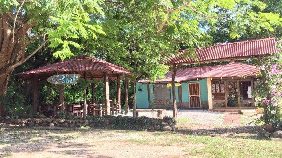 Playa Grande, كوستاريكا: Eat in the Jungle!