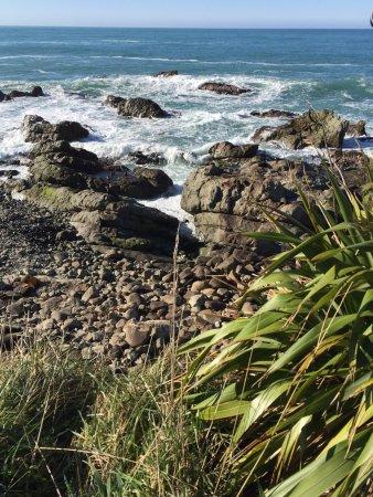 ไคคูรา, นิวซีแลนด์: photo2.jpg