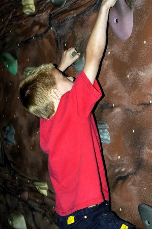 Rochester Museum & Science Center: Rock Climbing for Kids of All Ages