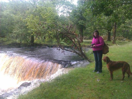 Killarney Guided Walks