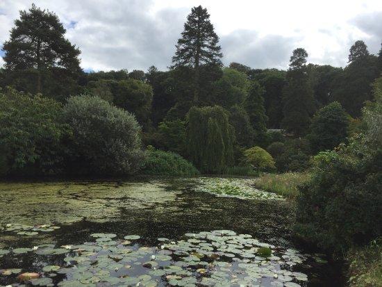 Gresgarth Hall Gardens: photo2.jpg