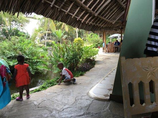 Turtle Bay Beach Club: photo3.jpg