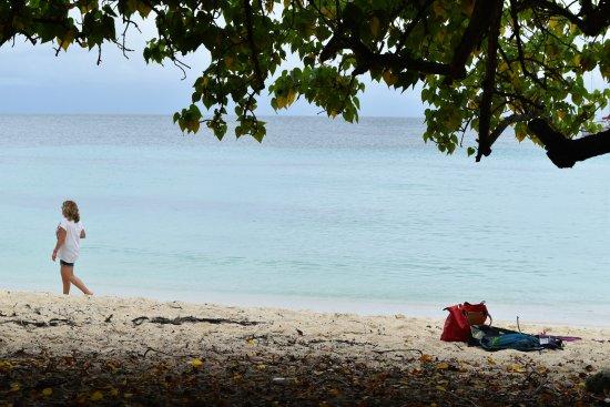 Marie-Galante, Gwadelupa: Seul au monde.