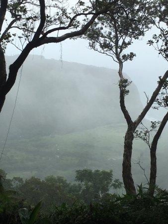 Kukuihaele, Havai: photo5.jpg