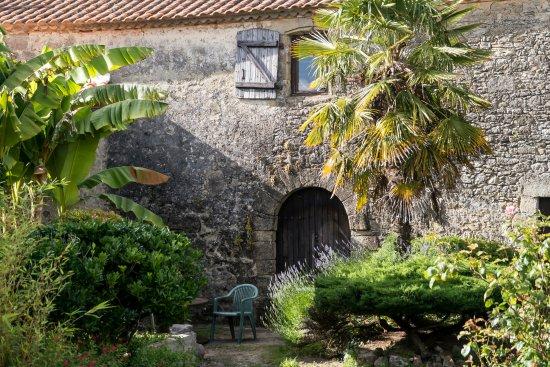Le jardin photo de le bistrot du ch ne vert sallertaine for Le jardin du pic vert