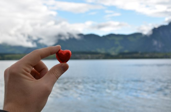 Hilterfingen, Szwajcaria: Hotel & grounds