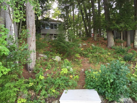 Wolfeboro, Nueva Hampshire: A look back at our cabin