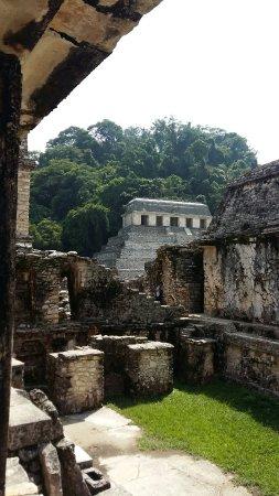 帕倫克古城和國家公園照片