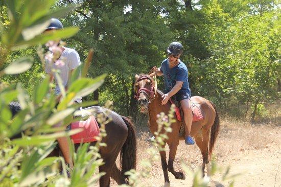 Pinar Horse Safari: IMG_1252_large.jpg