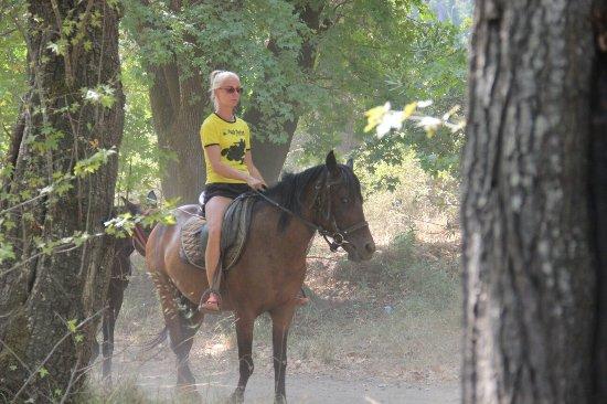 Pinar Horse Safari: IMG_1218_large.jpg