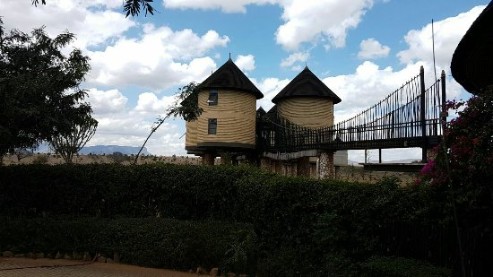 Tsavo, Quênia: IMG-20160819-WA0044_large.jpg