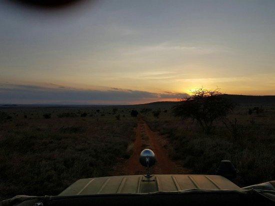 Tsavo, Quênia: IMG-20160819-WA0059_large.jpg